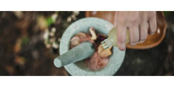 Polveri ed erbe
