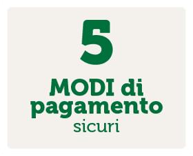 5 Modi di pagamento